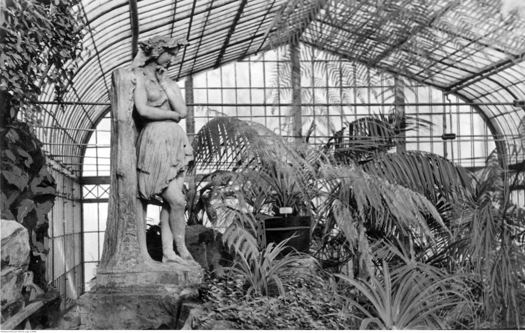 Palmiarnia w Ogrodzie Saskim, 1940